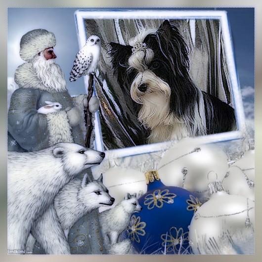 An den Beitrag angehängtes Bild: http://www.from-beautifull-snowflower.de/Images/n.jpg